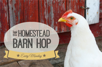 homesteadhop