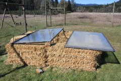 DIY Cold Frame for under $30!